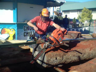 Westford Portable Chainsaw Mills-Rail Mill